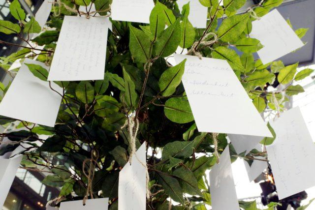 Wer Zeit hatte, schrieb seine Wünsche, Ziele und Pläne auf Karten und hängte sie an den Wünschebaum. (Bild: Babnik/Deutsche Krebsgesellschaft)