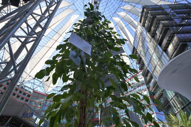 Der Wunschbaum beim German Cancer Survivors Day bot Platz für Wünsche und Hoffnungen der Teilnehmer. (Foto: Johannes Bruns)